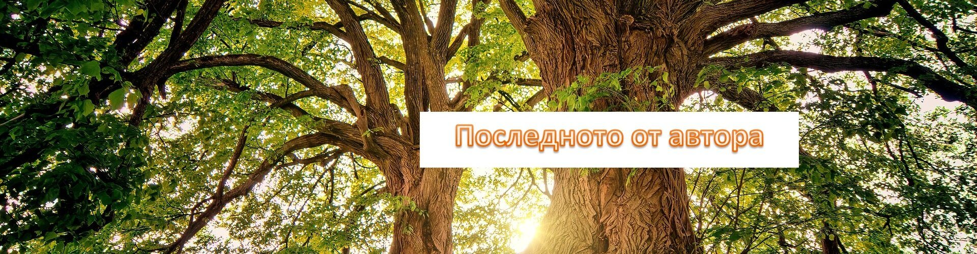 Последното издадено произведение от психолога Христо Гешанов